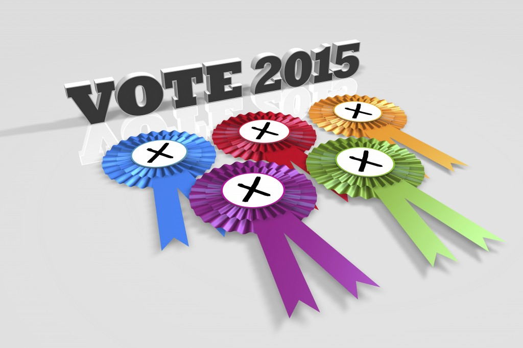 UK Vote 2015 Title and Rosettes angled